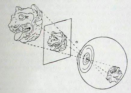Указывалось также, что при строгом соблюдении этих условий проекции предмета и его изображения на сетчатке глаза...