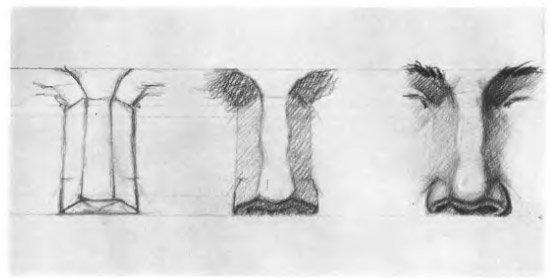 изображение носа