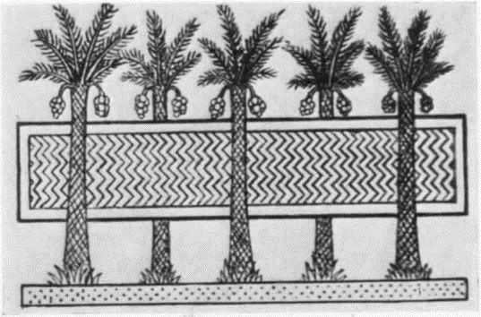 Бассейн с пальмами